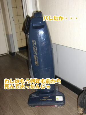 d0020869_40375.jpg