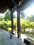 お気に入りスポット・京都の魅力_b0087378_18221072.jpg