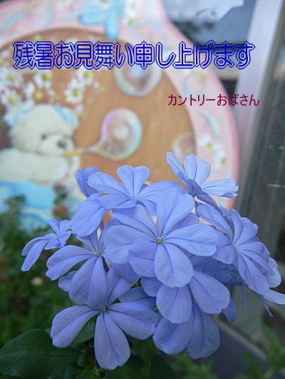 f0014980_22151119.jpg
