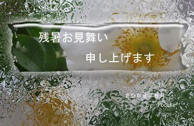 c0106443_90761.jpg