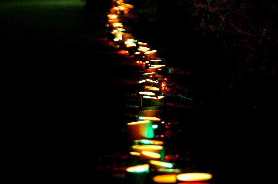 光りのある風景_b0093754_0372368.jpg
