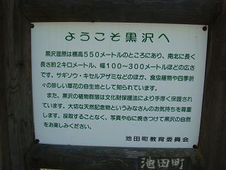 b0142383_19542718.jpg