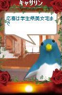 a0068693_043989.jpg