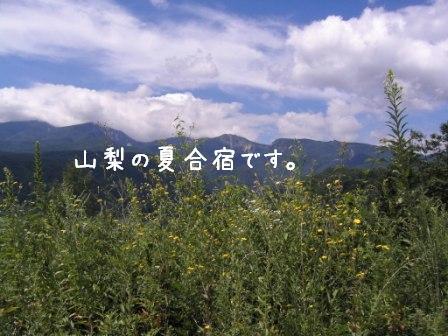 f0068501_1229788.jpg