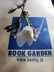 桜の花が咲きました_f0137324_10483161.jpg