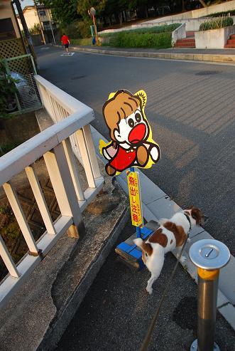 朝の散歩と新しい習慣_c0099133_221519.jpg
