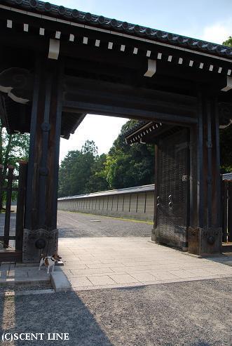 京都案内_c0099133_23182446.jpg