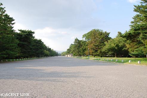 京都案内_c0099133_23192642.jpg
