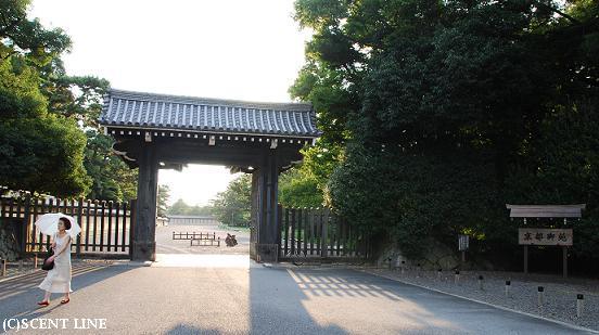 京都案内_c0099133_2322168.jpg