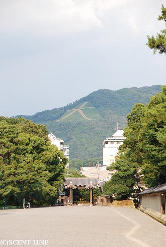 京都案内_c0099133_2322565.jpg