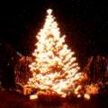 XBRL_a0036051_1313334.jpg