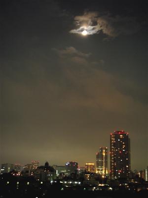 月と花火と松葉牡丹_f0160063_15293614.jpg