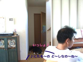 e0124868_10495980.jpg