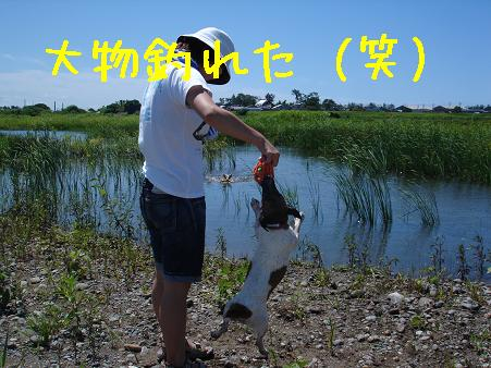 f0132772_1835966.jpg