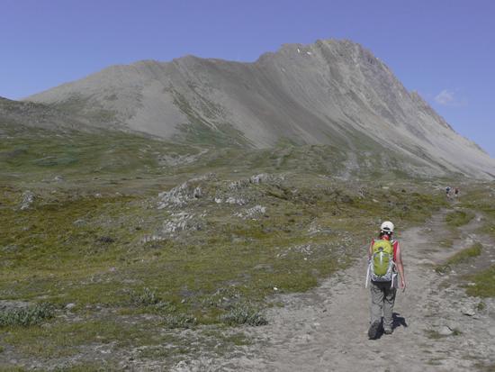 Mt.Wilcox(2884m)_d0112928_5202758.jpg