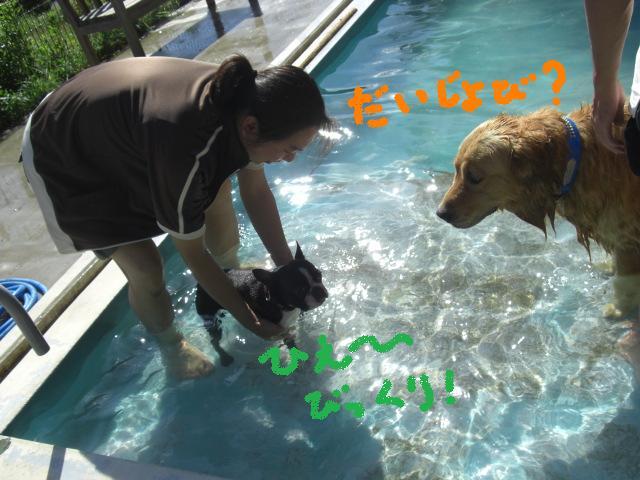 パートナーズハウス湯浅に行ってきました!_b0137064_1836612.jpg