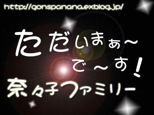 c0011204_2327226.jpg