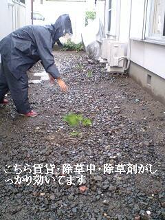ゴミ処理と諸々_f0031037_19204192.jpg