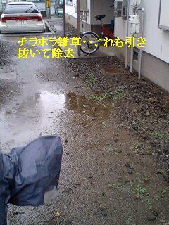 ゴミ処理と諸々_f0031037_19211637.jpg