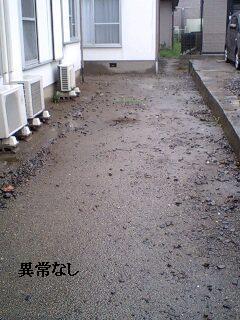 ゴミ処理と諸々_f0031037_1921526.jpg