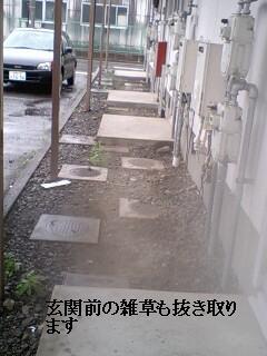 ゴミ処理と諸々_f0031037_19215687.jpg