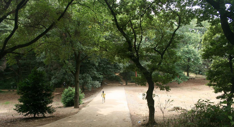 「警官の血」ロケ地     森林浴出来る仙元山          深谷のまちづくり その11  _a0107574_20422326.jpg