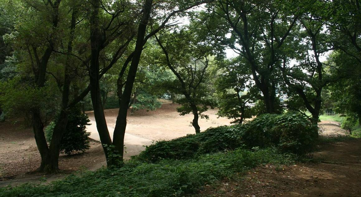 「警官の血」ロケ地     森林浴出来る仙元山          深谷のまちづくり その11  _a0107574_20423375.jpg