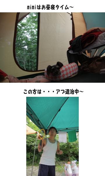 f0155381_20382338.jpg