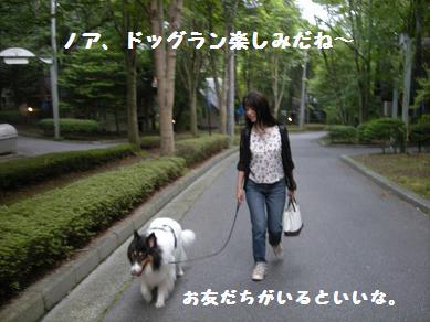 f0081100_223518.jpg