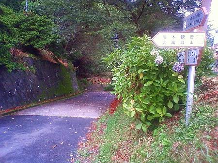 夏合宿1日目_a0036808_2372099.jpg
