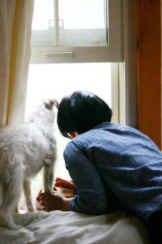 今日のロロ... 猫のいる風景_f0032814_2038552.jpg
