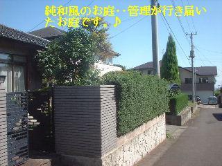 f0031037_16125082.jpg