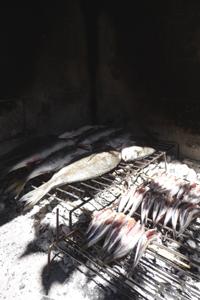 イタリアで焼き魚_f0106597_1143332.jpg