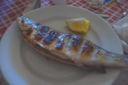 イタリアで焼き魚_f0106597_1272967.jpg