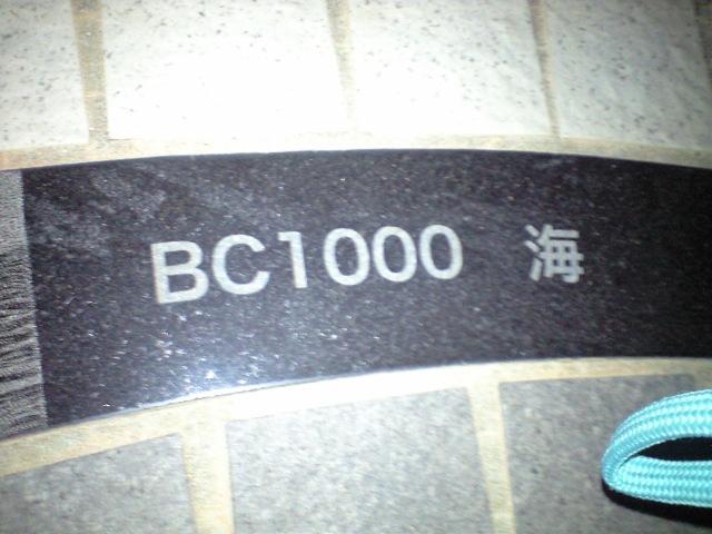 b0076307_1025154.jpg