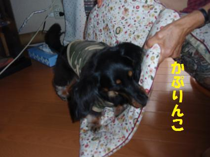c0151866_22143780.jpg