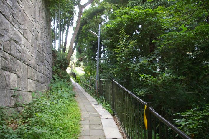 町内会が鎌倉市、大源にテストコートの開発中止を要望_c0014967_1131738.jpg