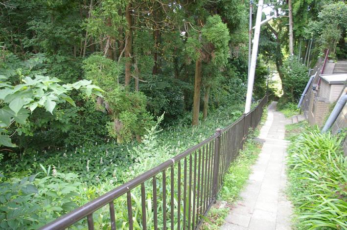 町内会が鎌倉市、大源にテストコートの開発中止を要望_c0014967_1133098.jpg