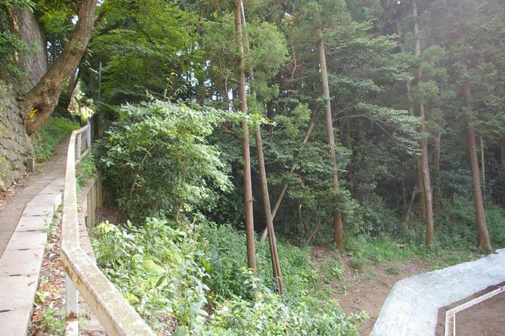 町内会が鎌倉市、大源にテストコートの開発中止を要望_c0014967_113681.jpg