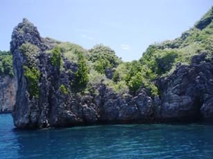 8月21日 ピピ島でファンダイビング_d0086871_21441597.jpg