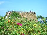 天空の城とはまなすの花&ローズヒップ_c0165824_2045253.jpg