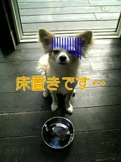 f0148927_18335100.jpg