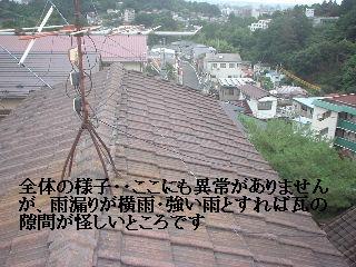雨漏り点検・・・刃物研ぎ・・資材購入_f0031037_1843911.jpg