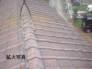 雨漏り点検・・・刃物研ぎ・・資材購入_f0031037_1845592.jpg