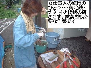 雨漏り点検・・・刃物研ぎ・・資材購入_f0031037_1865892.jpg
