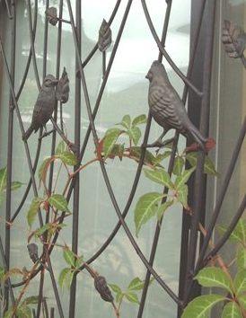 小鳥のアイアントレリスご紹介!_f0029571_12544485.jpg