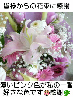 f0048372_0501848.jpg