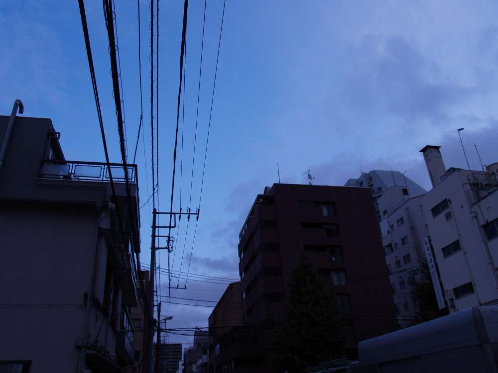 c0169199_224747.jpg