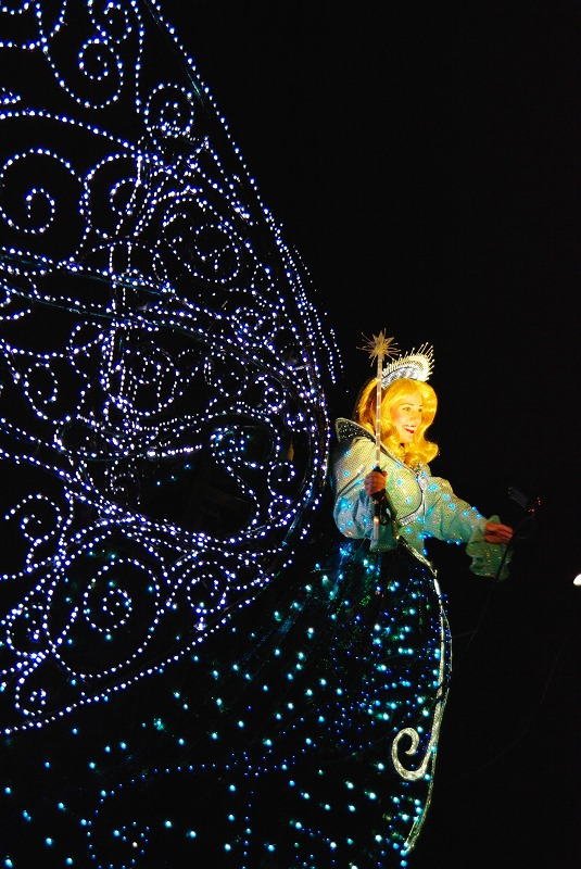 Electrical Parade_f0155048_16512353.jpg