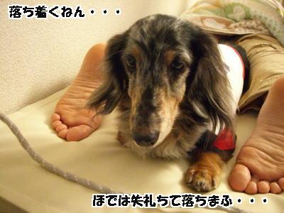 d0020869_1502520.jpg